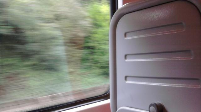 Train views (by Farihah Choudhury)