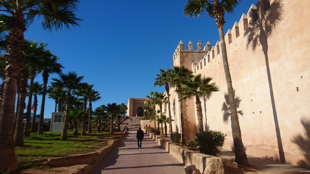 The palm-flanked path up to Rabat's ancient Kasbah, Morocco.