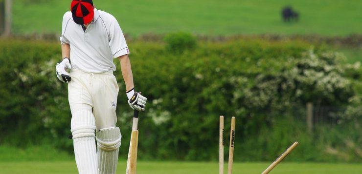 Cricket Pixabay